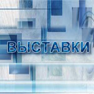 Выставки Верхнеднепровского